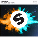 Collide (feat. Rosi Golan)/Vicetone