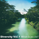 Diversity Vol.1 Whitch Do You Like?/Various Artists