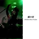 蝶の華/kNock in Story Project