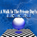 A Walk In The Private Day's/ELECTRIC STYLE