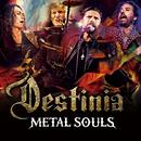 Metal Souls/Nozomu Wakai's DESTINIA