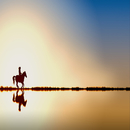 Running horse/レモン探偵