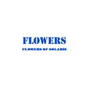 FLOWERS OF SOLARIS/フラワーズ