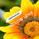Yellow Love/kentoazumi