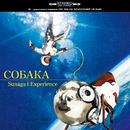 COБAKA (crouka)/Sunaga t experience