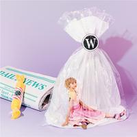 ハイレゾ/Wonderland/Dream Ami