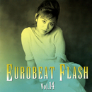 EUROBEAT FLASH VOL.14/V.A.
