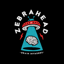 Brain Invaders/Zebrahead