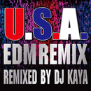 U.S.A.EDM Remix (Remixed by DJ KAYA)/DA PUMP