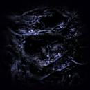 混沌 -解離した夢と現実の錯綜-/Daisuke