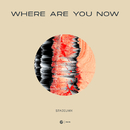 Where Are You Now/Stadiumx