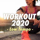 WORKOUT 2020 - Low Tempo -/V.A.