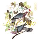 小鳥観察 Kotringo Best/コトリンゴ