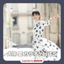 大塚 愛 カラオケHITS supported by DAM/大塚 愛