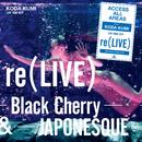 re(LIVE) -Black Cherry- (iamSHUM Non-Stop Mix) in Osaka at オリックス劇場 (2019.10.13)/倖田來未