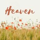 Heaven/LISA