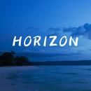 Horizon/LISA