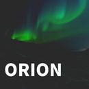 Orion/LISA
