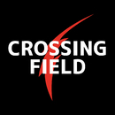 Crossing Field/LISA