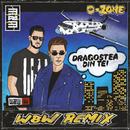 恋のマイアヒ Dragostea Din Tei (W&W Remix)/O-ZONE