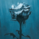 Deep inside + Unknown best/waterweed
