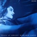 佐藤奈々子ベスト・アルバム ~Tears of ANGEL~/佐藤奈々子