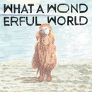 What A Wonderful World/堀込泰行