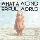 What A Wonderful World (24bit/48kHz)/堀込泰行