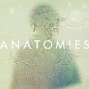 ANATOMIES/Halo at 四畳半