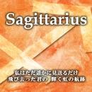 Sagittarius/小山ツトム 松宮恭子