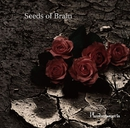 Seeds of Brain/Phantasmagoria