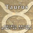 Taurus/小山ツトム 松宮恭子