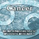 Cancer/小山ツトム 松宮恭子