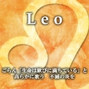Leo/小山ツトム 松宮恭子