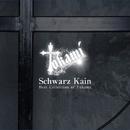 Schwarz Kain DVD/Tokami