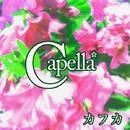 カフカ/Capella