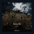 Wailing Wall 2004~2010【DISC1】/Phantasmagoria