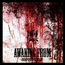 """AWAKING from -Independent """"MAZE""""- DISC-1/凛-the end of corruption world-"""