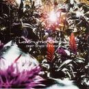 Deep Space Syndicate/La'cryma Christi