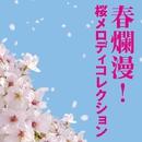 春爛漫!桜メロディコレクション/メロディー・ジョーンズ
