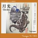 月光~Gecko/テミヤン