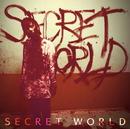 SECRET WORLD TYPE-C(通常盤)/Neverland