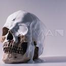 DeadMAN【初回限定-白盤-】/Neverland