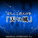 ぱちんこ蒼天の拳 「天つ風」 ORIGINAL COVER INST. Ver./NIYARI計画