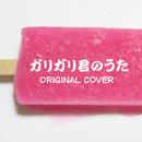 ガリガリ君のうた ORIGINAL COVER/NIYARI計画