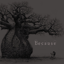 Because 初回限定盤 TYPE-A/The Benjamin