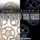 「Steins;Gate」シュタインズ・ゲート HACKING TO THE GATE ORIGINAL COVER INST Ver./NIYARI計画