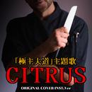 「極主夫道」 CITRUS ORIGINAL COVER INST Ver./NIYARI計画