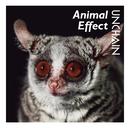 Animal Effect/UNCHAIN