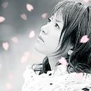 横顔~わたしの知らない桜~/今でもあなたが/藤田麻衣子